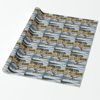 MAGPIE GEESE RURAL QUEENSLAND AUSTRALIA WRAPPING PAPER