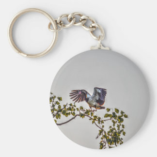 MAGPIE GOOSE IN FLIGHT AUSTRALIA ART EFFECTS KEYCHAIN