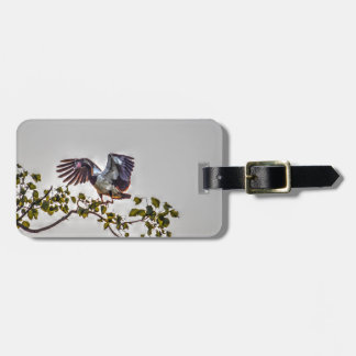 MAGPIE GOOSE IN FLIGHT AUSTRALIA ART EFFECTS LUGGAGE TAG