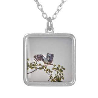 MAGPIE GOOSE IN FLIGHT AUSTRALIA ART EFFECTS SILVER PLATED NECKLACE