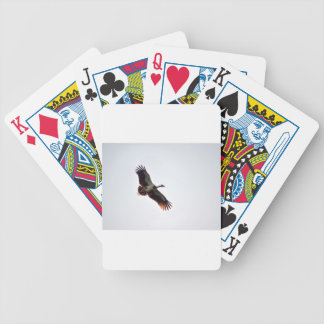 MAGPIE GOOSE QUEENSLAND AUSTRALIA ART EFFECTS BICYCLE PLAYING CARDS