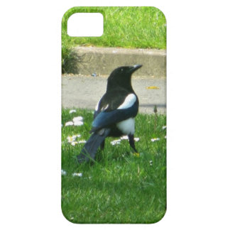 Magpie iPhone 5 Covers