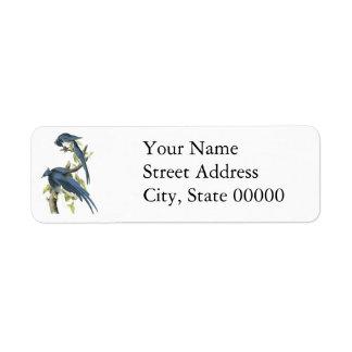 Magpie Jay, John Audubon