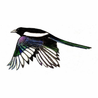 Magpie Magnet Photo Sculpture Magnet