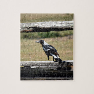 MAGPIE ON FENCE  RURAL QUEENSLAND AUSTRALIA JIGSAW PUZZLE