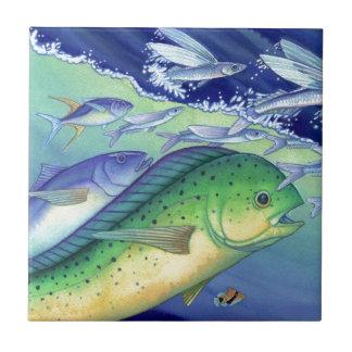 Mahi Mahi (Dolphin Fish) chasing Flying Fish Tile