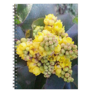 Mahonie; Oregon Grape spiral photo note book