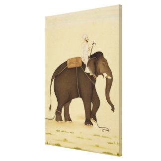 Mahout Riding an Elephant Painting (18th Century) Canvas Print