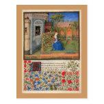 Maiden in  the garden post cards