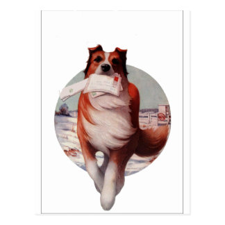 Mail Dog Postcard