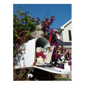 Mailbox! Postcard