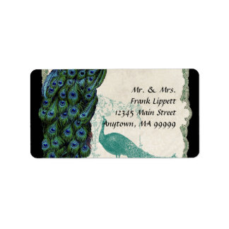 Mailing Labels - Vintage Peacock Feathers 5