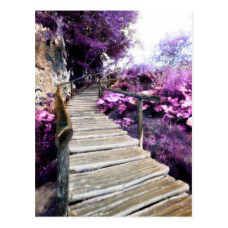 mailing list comment card wisteria stairs postcard