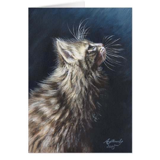 """Maine Coon Cat """"Angel Light"""" Greeting Note Card"""