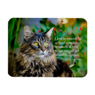 Maine Coon Cat Inspirational Magnet
