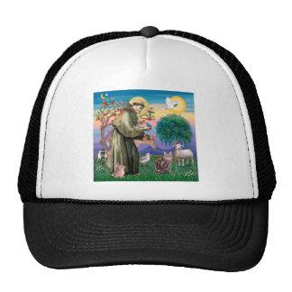 Maine Coon Cat  - St Francis Trucker Hat