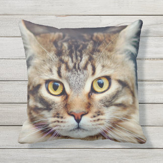 MAINE COON FACE FOCUS THROW PILLOW