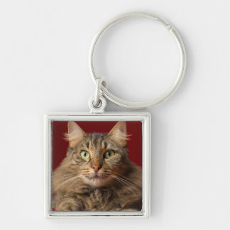 Maine Coon for Christmas with collector Silver-Colored Square Keychain