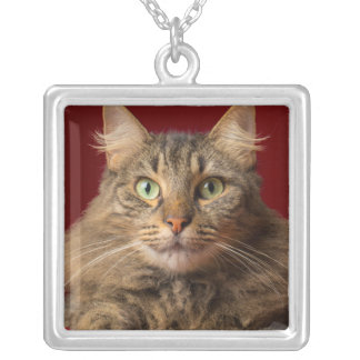 Maine Coon for Christmas with collector Square Pendant Necklace