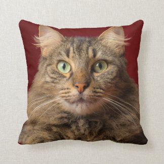 Maine Coon for Christmas with collector Throw Pillow