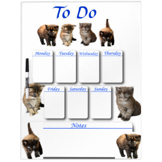 Maine Coon Kitten Dry Erase Board