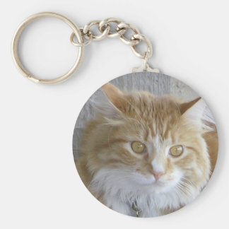 Maine Coon Kitten Face Close-Up Photograph Keychain