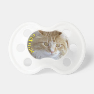 Maine Coon Kitten Face Close-Up Photograph Pacifier