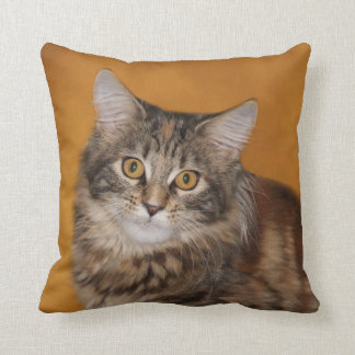 Maine Coon kitten face Throw Pillow