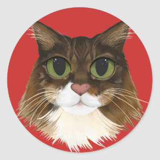 Maine Coon Minky Stickers