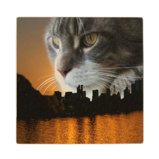 Maine Coon over NYC Maple Wood Coaster