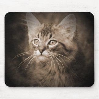 Maine Coon Sepia #1 Mousepad