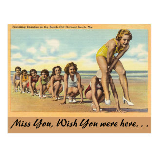 Maine, Frolicking Beauties Postcard