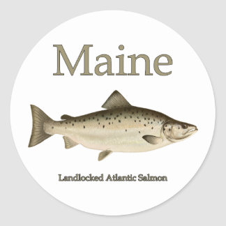 Maine Landlocked Salmon Round Sticker