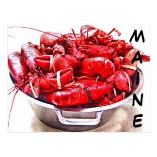 Maine Lobster Postcard