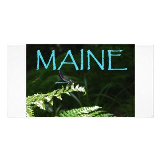 Maine Postcard of a Dragonfly Custom Photo Card