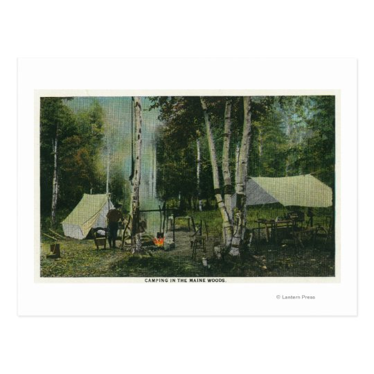 MaineView of a Campground in the Maine Woods Postcard