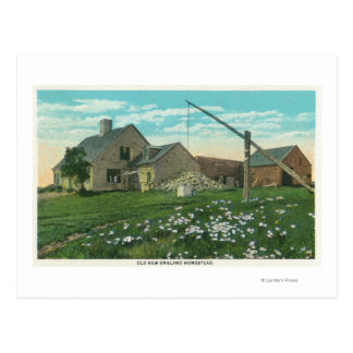 MaineView of an Old New England Homestead Postcard