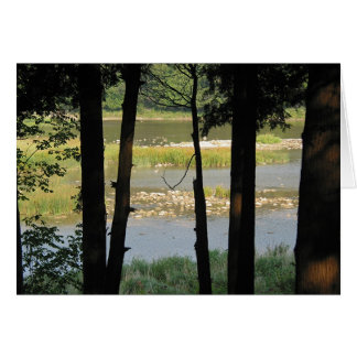 Maitland River View Card