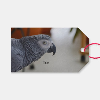 Majestic African Grey Parrot Pack Of Gift Tags