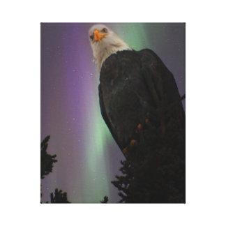 Majestic Bald Eagle among the Aurora Canvas