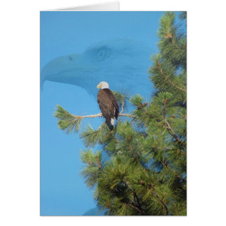 Majestic Eagle Card