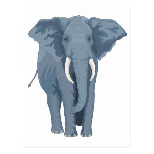 Majestic Elephant Postcards