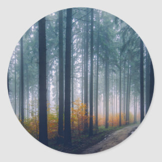 Majestic Forest Path Classic Round Sticker
