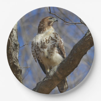 Majestic Hawk 9 Inch Paper Plate
