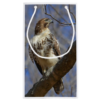 Majestic Hawk Small Gift Bag