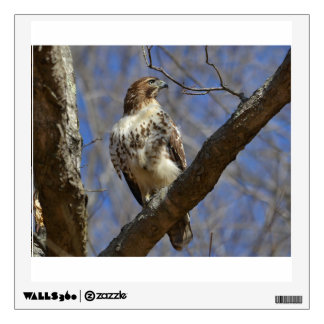 Majestic Hawk Wall Decal