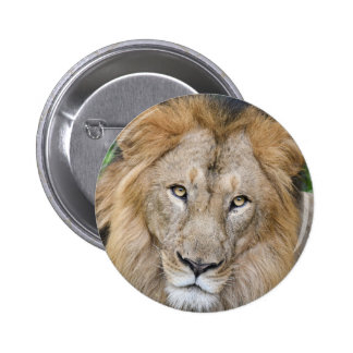Majestic Lion King 2 Inch Round Button