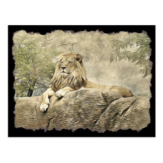 Majestic Lion sitting on a Cliff Postcard