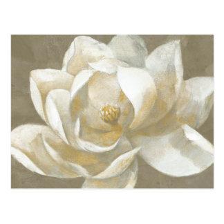 Majestic Magnolia Postcard