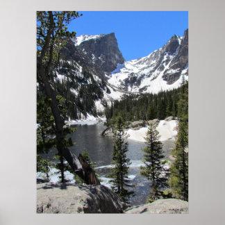 Majestic Nature in Estes Park Colorado Poster